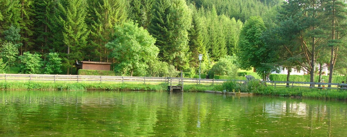 Fischteich in Kleinzell
